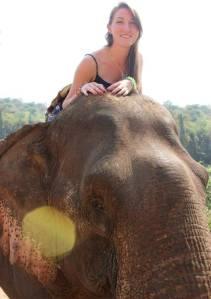 Riding my elephant in Luang Prabang, Laos