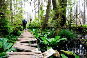 west-coast-trail-british-columbia